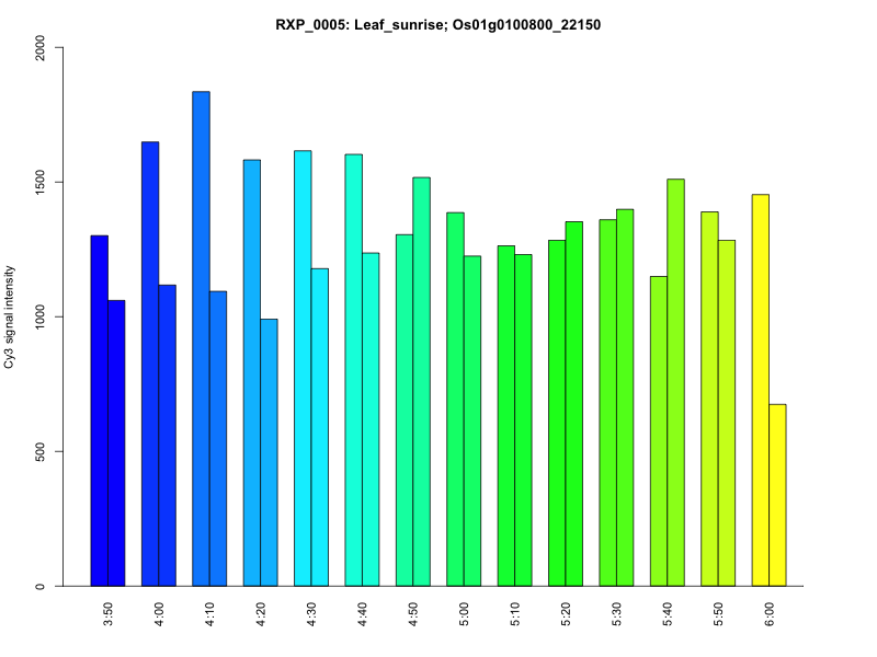 rice expression profile database leaf gene expression profile during sunrise graph view modern modern